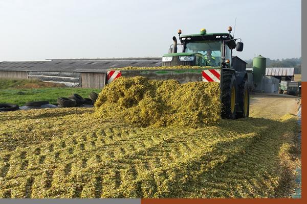 Guillon Barbot Travaux Agricoles Vitré En Ille Et Vilaine Img8 55