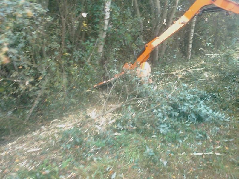 GUILLON BARBOT Travaux Agricoles Vitre En Ille Et Vilaine IMAGE 027 E1424337947372 155